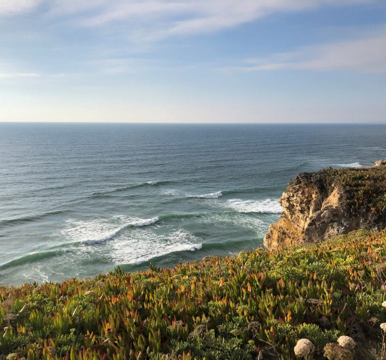 Riding the waves: sustainable surfing in Portugal