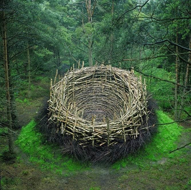 Environmental Art: Nils Udo